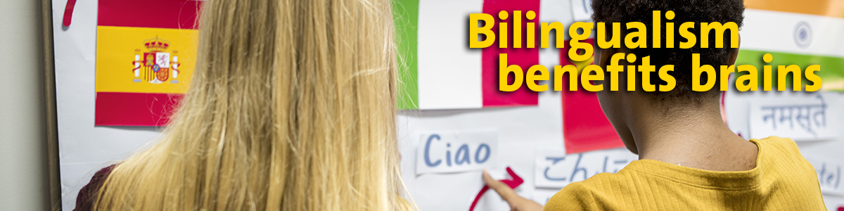 Bilingual benefits beyond social & literacy