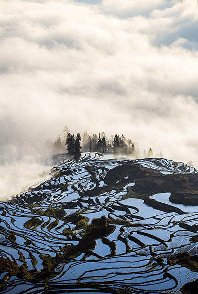 Yuanyang rice terrace at sunrise