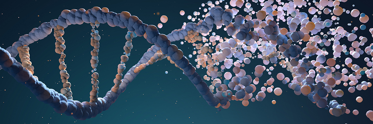 dna-strand-assembling-from-different-elements